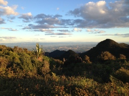 The view from Mt Pirongia.