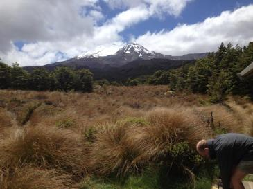 View of Mt Ruapehu from the hut.